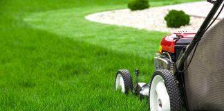 Manutenzione giardini e aree verdi Roma